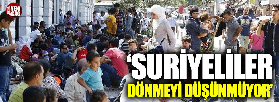 """""""Suriyeli mülteciler geri dönmeyi düşünmüyor"""""""