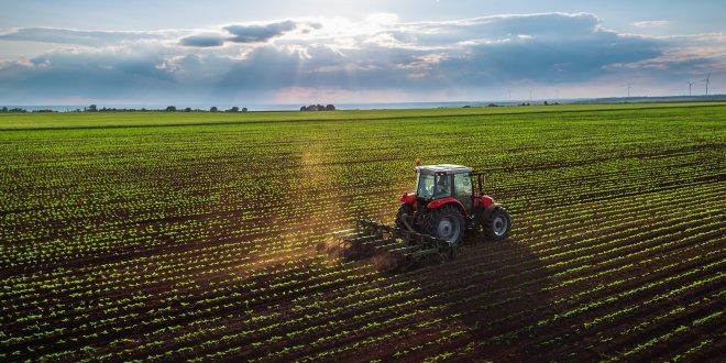 Konya büyüklüğünde tarım arazisi yok oldu!