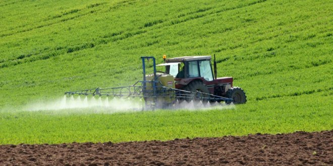 Çiftçi buğday ekemiyor