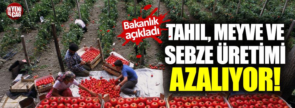 Tahıl, meyve ve sebze üretimi azalıyor