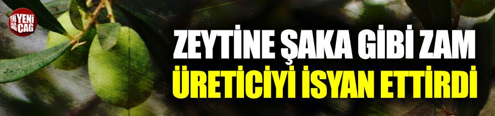 Zeytin üreticisinden fiyatlara tepki