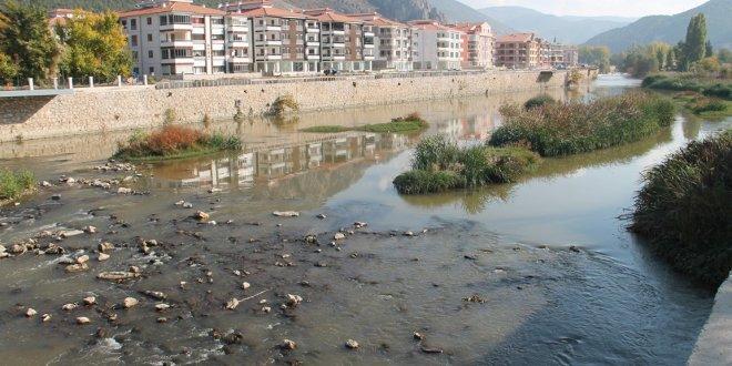 Yeşilırmak'ta korkutan balık ölümleri