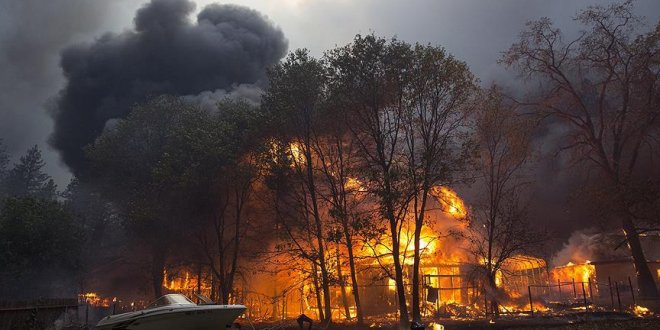 ABD'de orman yangını önlenemiyor