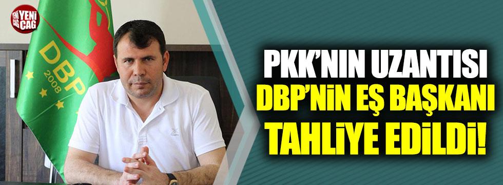 PKK'nın uzantısı DBP'nin Eş Başkanı tahliye edildi!