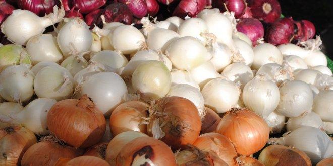 Soğan fiyatı yüzde 100 arttı!