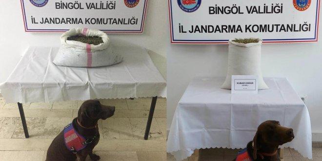 Bingöl'de 17 kilo esrar ele geçirildi