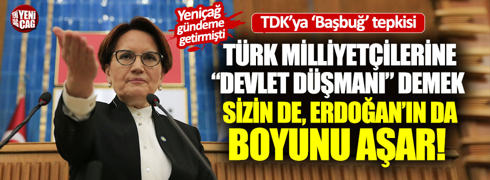 Meral Akşener'den TDK'ya Başbuğ tepkisi