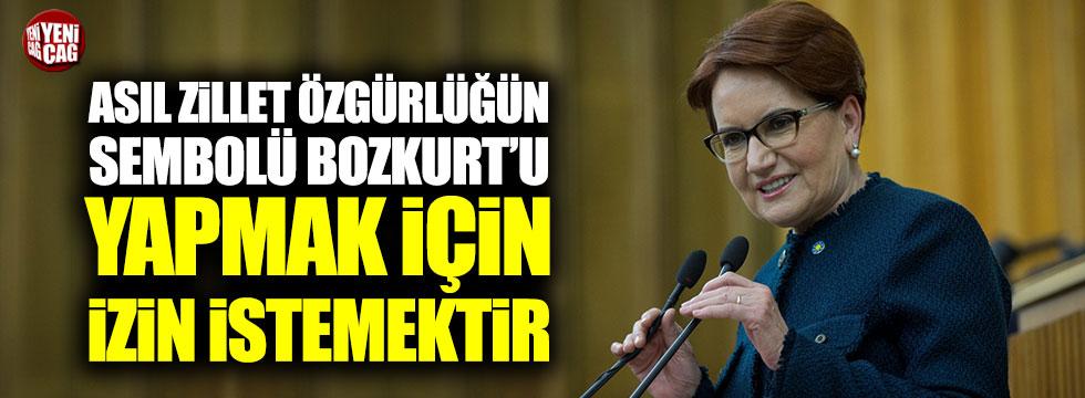 Meral Akşener'den Bozkurt tepkisi!