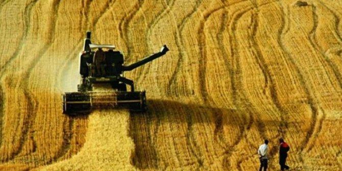 Savaştaki Suriye'den tarım ürünü alıyoruz