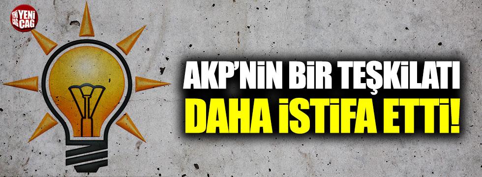 AKP'nin bir teşkilatı daha istifa etti!