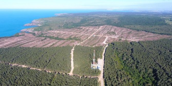 Japon şirket Sinop'taki nükleer santral projesini askıya aldı