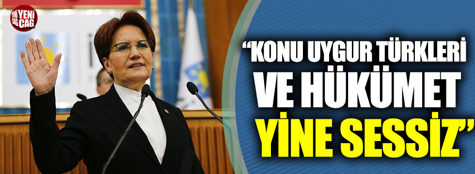 """Meral Akşener: """"Konu Uygur Türkleri ve hükümet yine sessiz"""""""