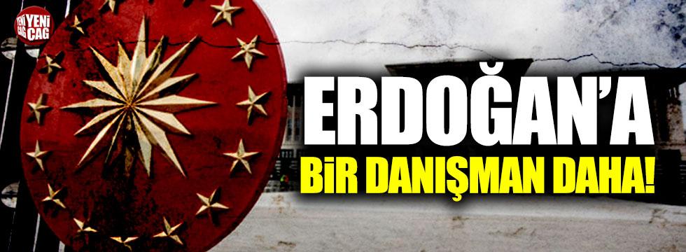 Erdoğan'a bir danışman daha!