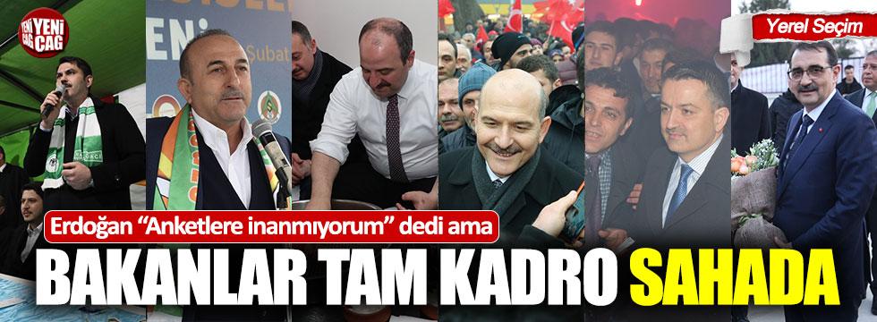 Erdoğan anketlere inanmıyorum dedi ama Bakanlar tam kadro sahada