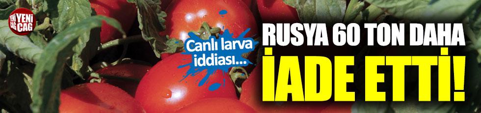 Canlı larvalı domatesler Türkiye'ye iade edildi