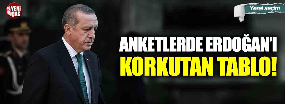 Anketlerde Erdoğan'ı korkutan tablo