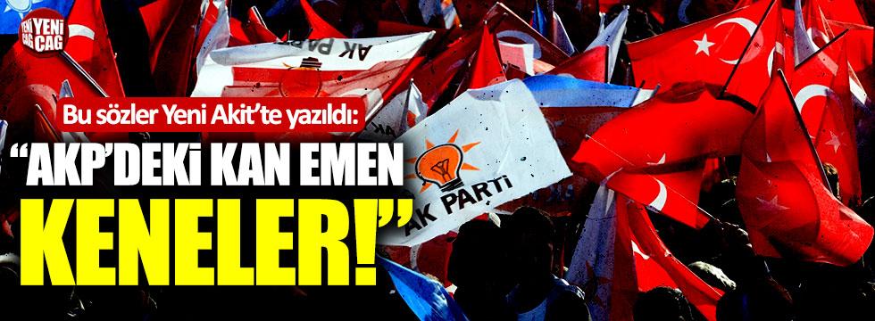 """Bu sözler Yeni Akit'te yazıldı: """"AKP'deki kan emen keneler"""""""