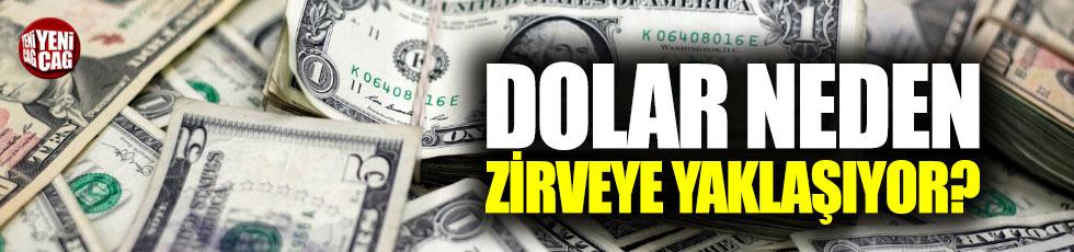 Dolar neden zirveye yaklaşıyor?