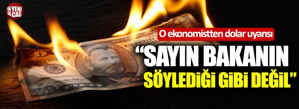 """O ekonomistten dolar uyarısı: """"Sayın Bakanın söylediği gibi değil"""""""