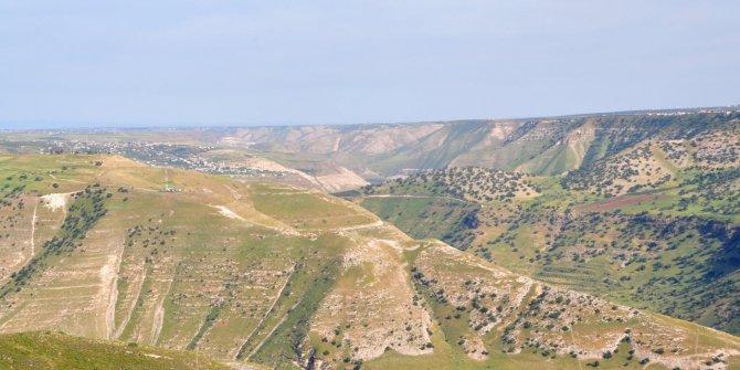 Golan tepeleri veya eşeğimin yok kolanı!