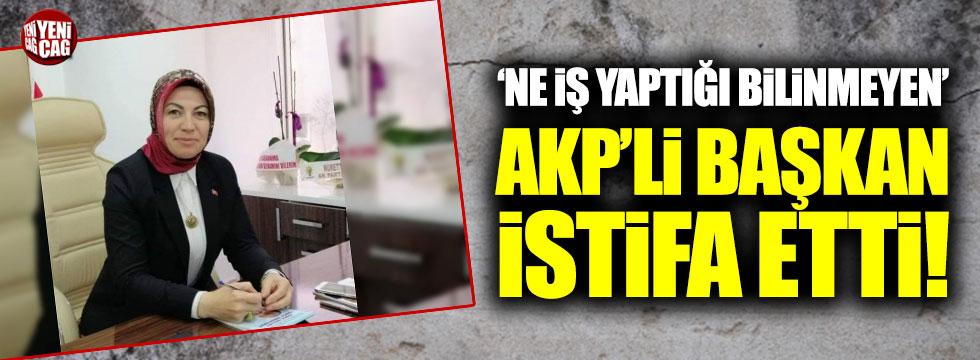 'Ne iş yaptığı bilinmeyen' AKP'li başkan istifa etti!