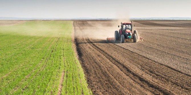 'Tarımda ithalat'ta liste kabarıyor: Arpa, soya, ayçiçeği...