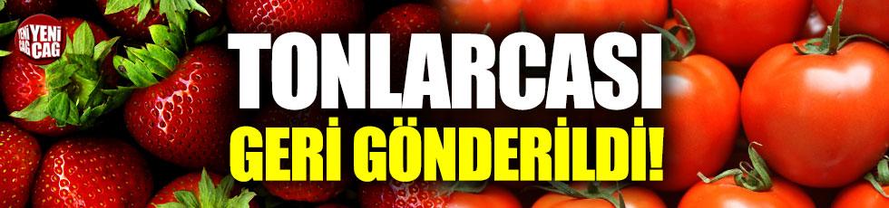 Tonlarca domates ve çilek Türkiye'ye geri gönderildi