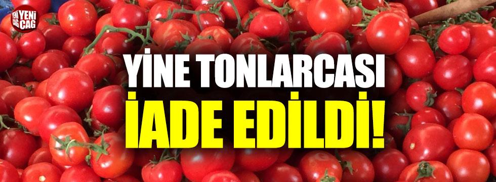 Tonlarca domates geri gönderiliyor