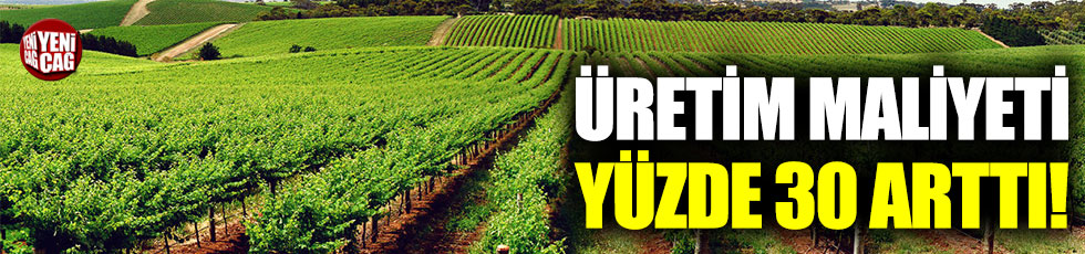 Tarımda üretici fiyatları yüzde 30 arttı!