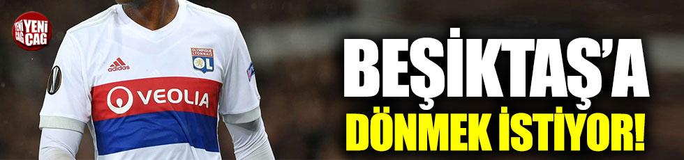 Marcelo, Beşiktaş'a dönmek istiyor!