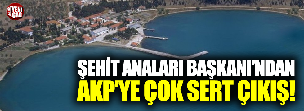 Şehit Anaları Başkanı'ndan AKP'ye çok sert çıkış!