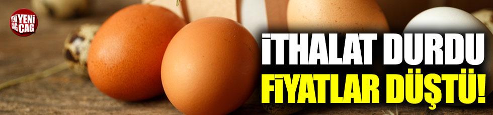 Irak'a ithalat durdu, yumurta fiyatları düştü!