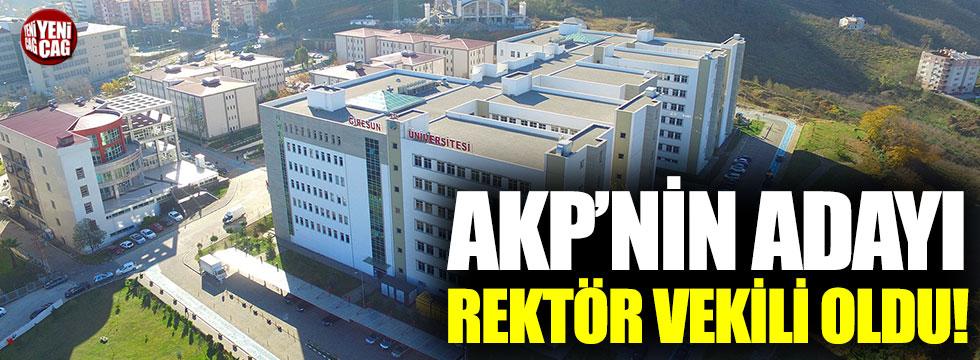 AKP'nin adayı üniversiteye rektör vekili oldu!