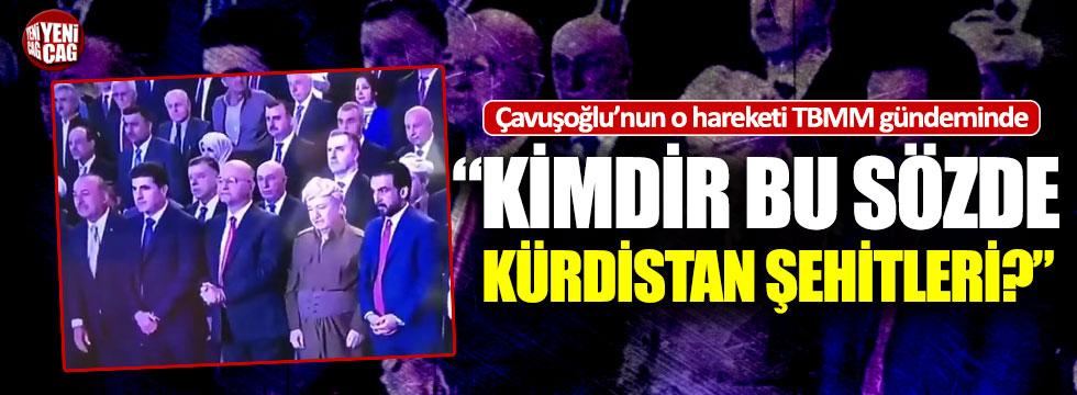 İYİ Partili Öztürk'ten Çavuşoğlu'na 'Kürdistan' tepkisi