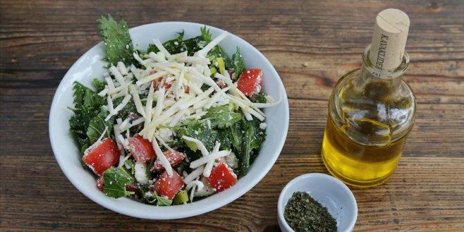 Bağırsaktaki yararlı mikroorganizmalar için Akdeniz tipi beslenme!