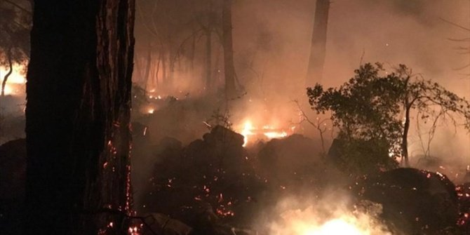 Muğla'da yangın yeniden kontrolden çıktı