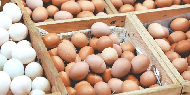"""""""Yumurta sektörü maliyetin altında satış yapıyor"""""""