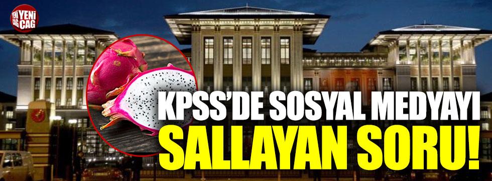 KPSS'de çıkan ejder meyvesi sosyal medyada gündem oldu