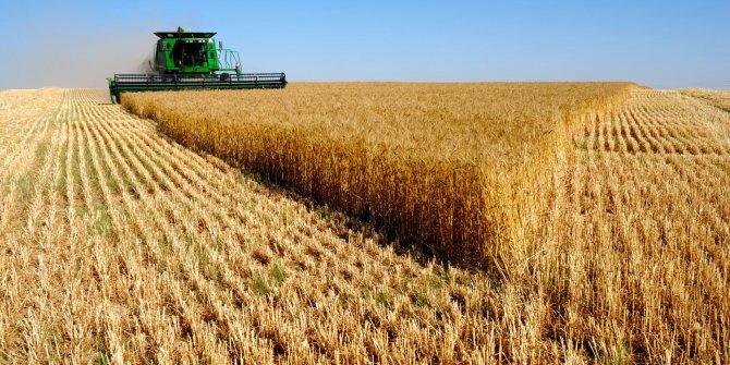 Tarımda üretici fiyatları yüzde 26 arttı