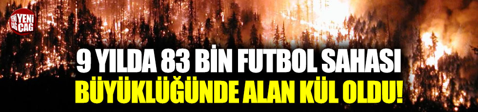 Son 9 yılda 83 bin 557 futbol sahası büyüklüğünde alan kül oldu!