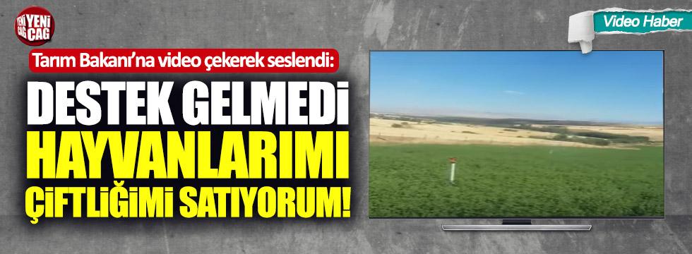 """Tarım Bakanı'na video çekerek seslendi: """"Çiftliğimi, hayvanlarımı satıyorum"""""""