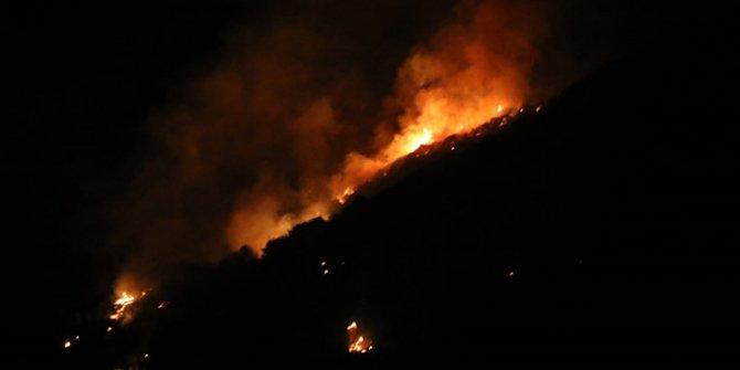 Aydın'da makilik alanda yangın