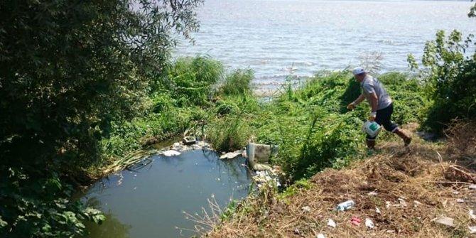 Batı Nil virüsünün yayılma nedeni ortaya çıktı