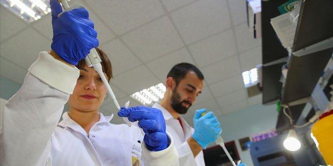 Türk bilim insanları 4 ölümcül virüs tespit etti