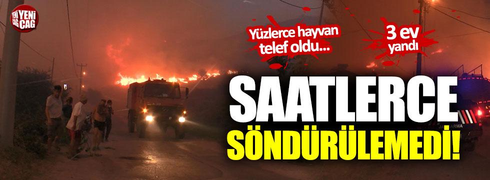 Marmara Adası'ndaki yangın yeniden kontrol altında