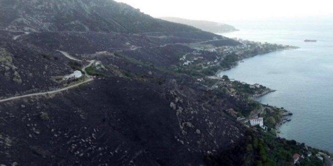 Marmara Adası'ndaki yangınla ilgili gözaltı