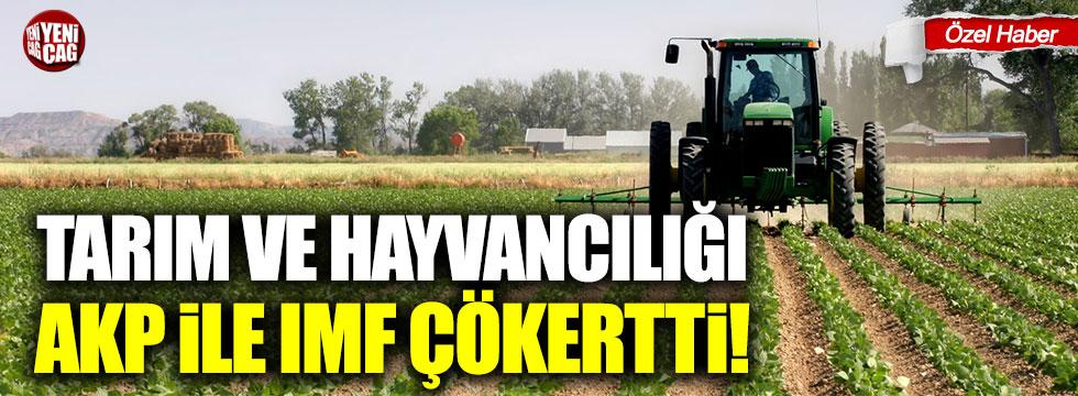 Tarım ve hayvancılığı AKP ile IMF çökertti