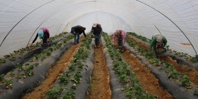 Çalışanlar ekonomik ve  siyasi kuşatma altında…