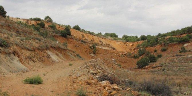 Eskişehir'de maden projeleri için 200 bine yakın ağaç kesilecek!