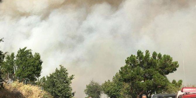 İzmir'deki orman yangını yerleşim alanlarını tehdit ediyor!